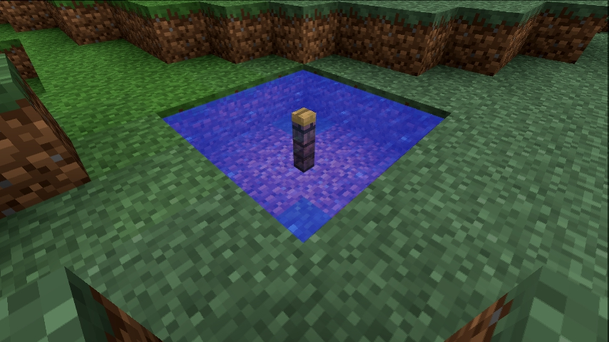 how to carry water in minecraft 1.10